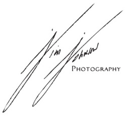 JJ_signature_logo_1_cropped